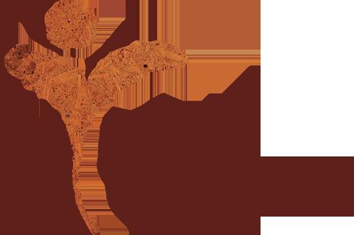 Marieke Lampe